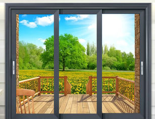 Double Tempered Glass 3.0mm Aluminum Sliding Patio Doors